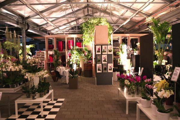 gartenhaus wyss mieten my blog. Black Bedroom Furniture Sets. Home Design Ideas